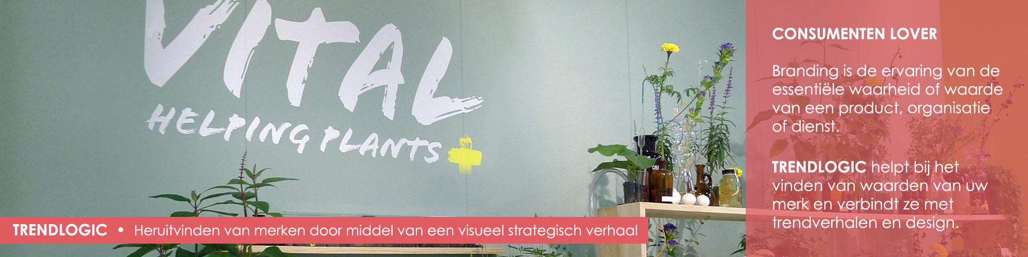 <a href='http://trendlogic.nl/nl/vital-fit-all-nl/'></a>